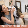 Tips for first time and aspiring dog owners