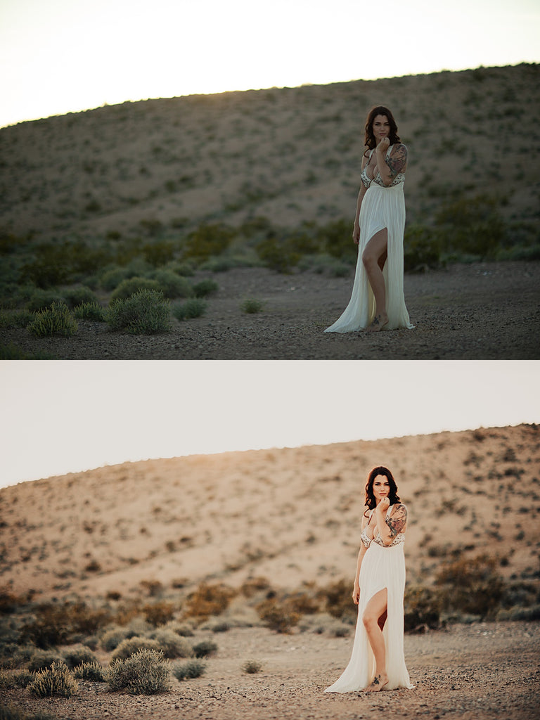 Bohemian Desert Lightroom