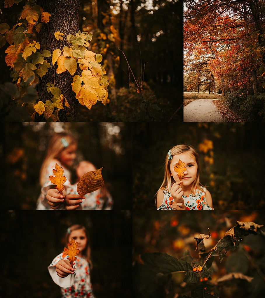 Ultimate Fall Presets Bundle- Includes over 300 presets!!