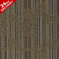 Coevolusion Evolve Reshap Carpet Tile 5503
