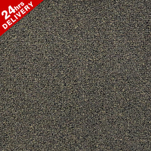 Midland Warwick Carpet Tile 8560