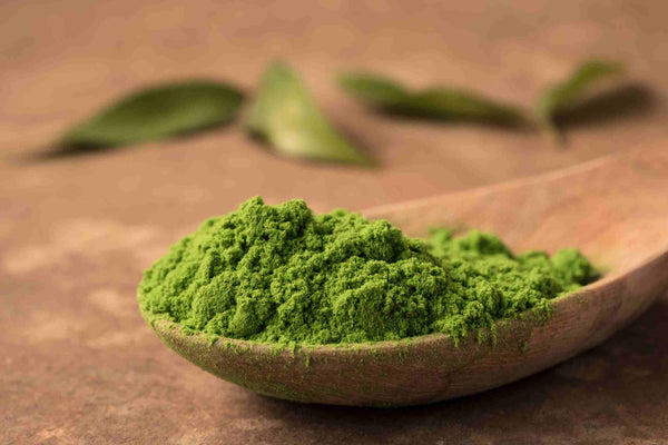 matcha magical green tea powder on a spoon