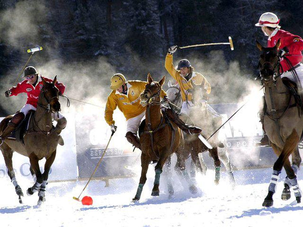 SNOW POLO SEASON 2012