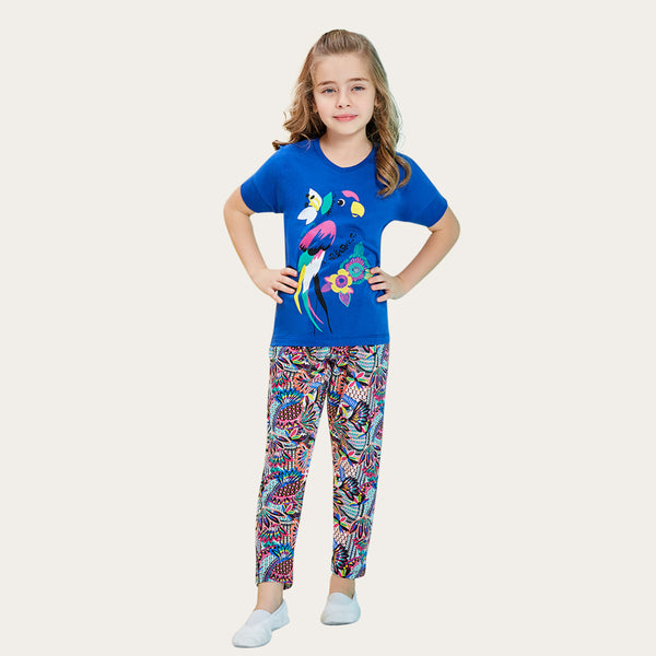 Colorful Parrot Set