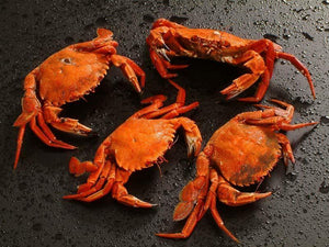 1kg Cooked Velvet Crabs - The Oyster Shed