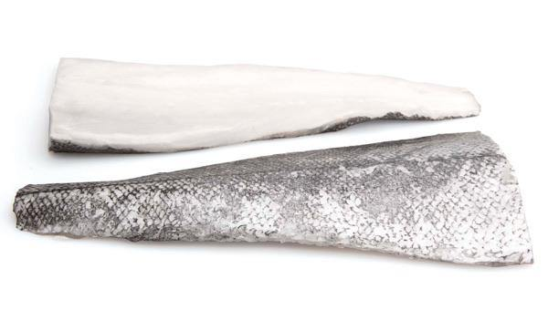 Hake Fillet - Skin on - The Oyster Shed