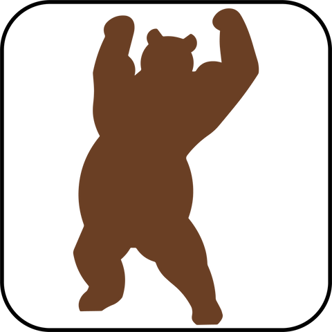 AUB Dancing Bear