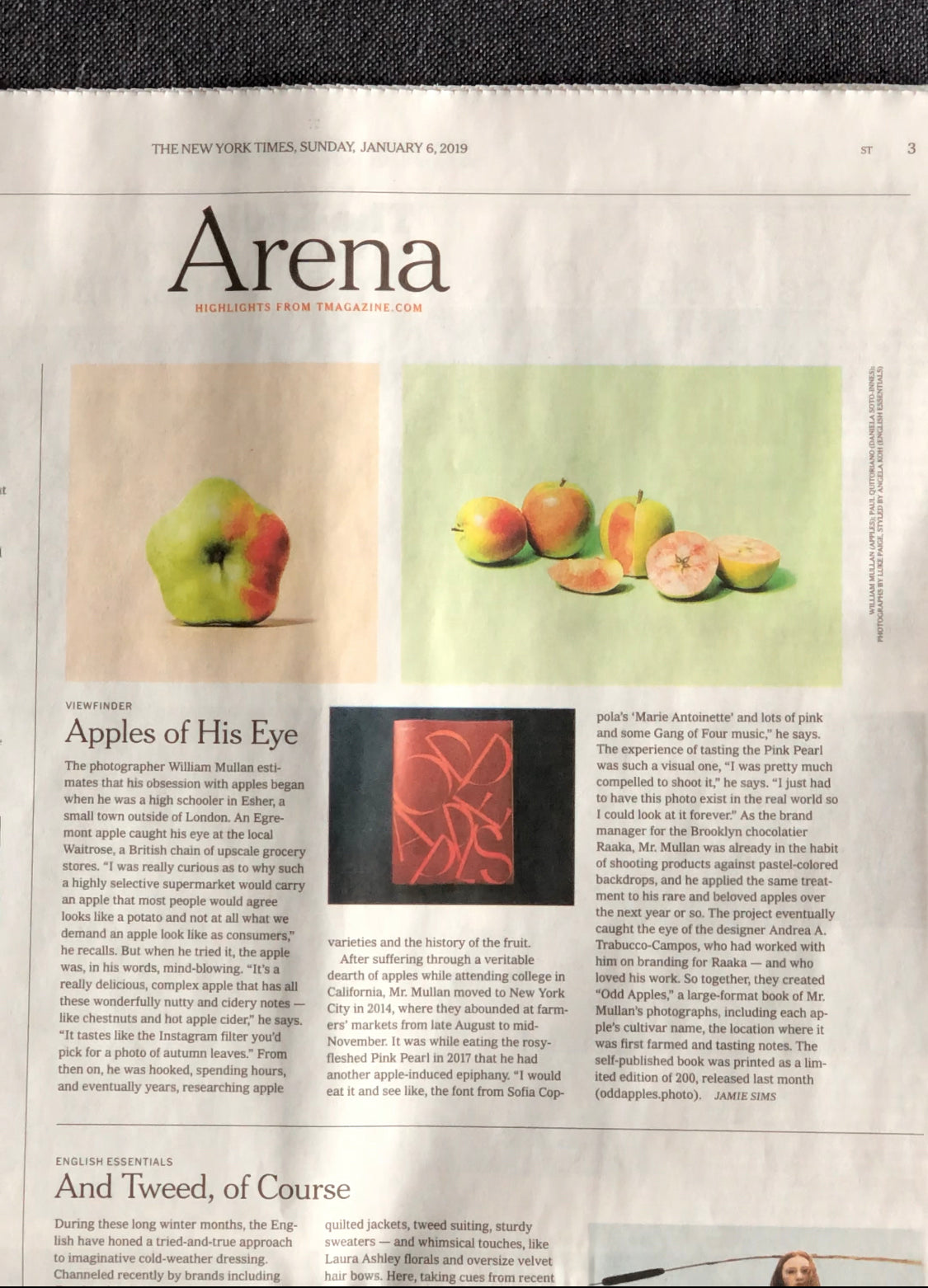 Sunday Review in NYT