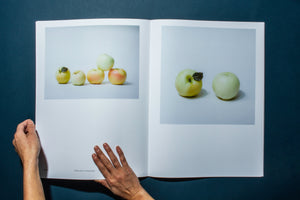 Odd Apples Photobook