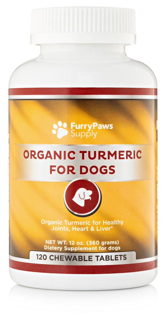 Organic Turmeric for Dogs