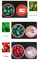 Load image into Gallery viewer, 25 Pcs per Box Bullet Head Back Flow Incense