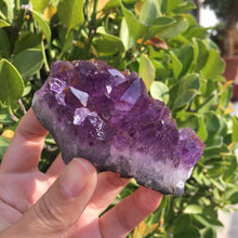 Load image into Gallery viewer, Natural Dream Amethyst Crystal Cluster 110-120g