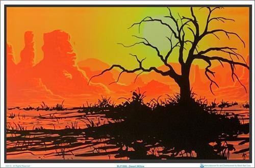Posters Desert Willow - Black Light Poster 006519