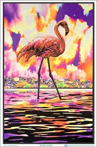 Posters Flamingo - Black Light Poster 009328
