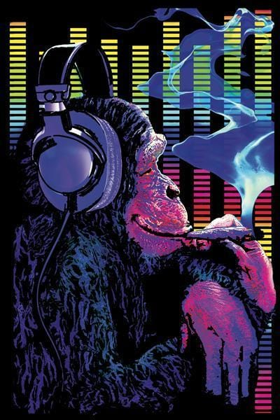 Posters Funky Monkey - Black Light Poster 005742