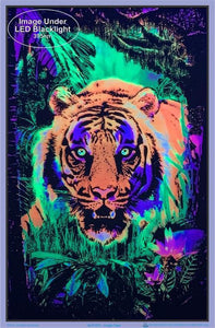 Posters Jungle Tiger - Black Light Poster 100157