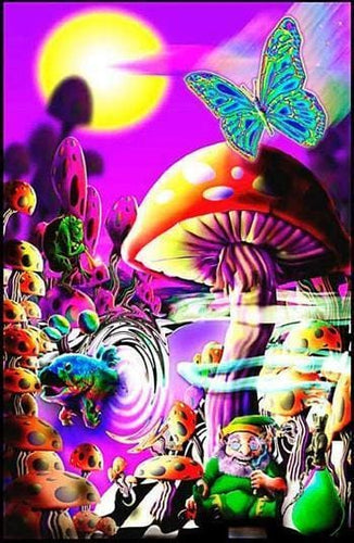 Posters Magic Valley - Black Light Poster 003726