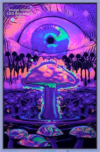 Posters Mushroom Ripple - Black Light Poster 008257
