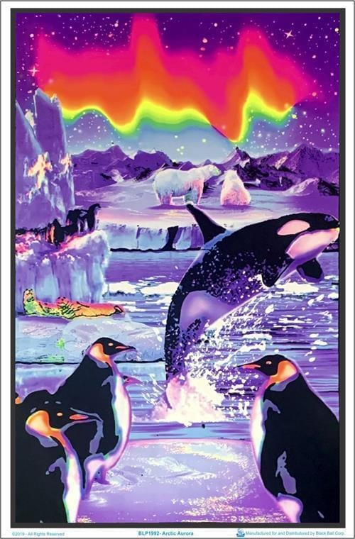 Posters Penguin Arctic Aurora - Black Light Poster 100147
