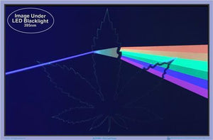 Posters Pot Leaf Prism - Black Light Poster 010040