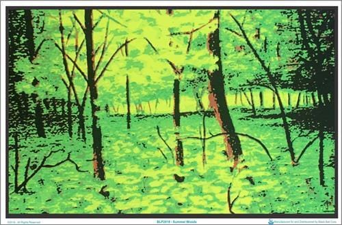 Posters Summer Woods - Black Light Poster 100141
