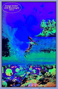 Posters Surf - Black Light Poster 100152