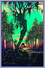 Load image into Gallery viewer, Posters Swamp Mirage - Black Light Poster 000615