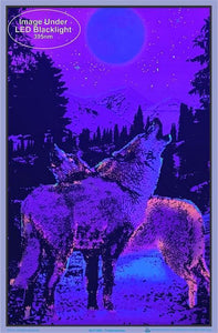 Posters Timberwolves - Black Light Poster 006152