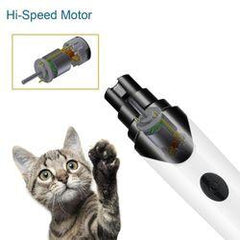 Cat Looking at Pet Nail Trimmer with Paw point towards it