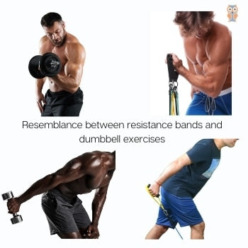 Resemblance between dumbbell and resistance band exercises