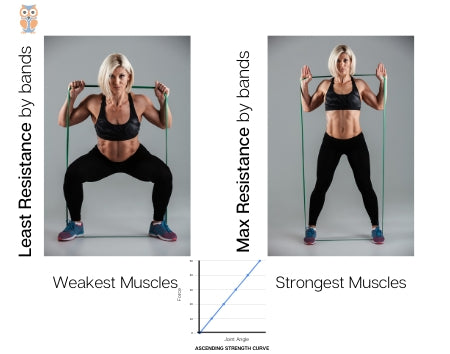 Resistance bands matches strength curve in a better way