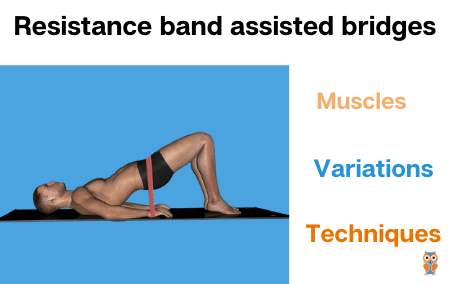 how to do resistance band assisted bridges