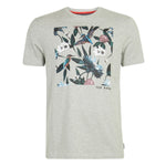 Ted Baker - Litall Bird Graphic Cotton T-Shirt in Grey Marl - Nigel Clare