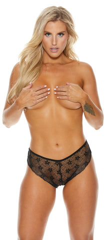 Lace Sheer Cheeky Panty Plus Size