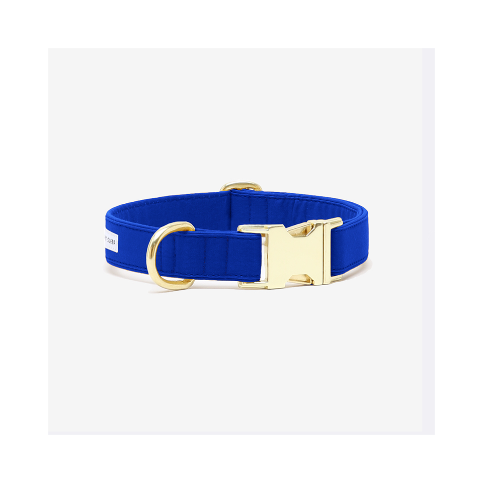 "SEE SCOUT SLEEP Collar 1/2"" The Scot - Royal Blue"