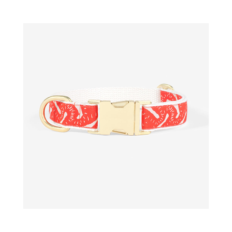 "SEE SCOUT SLEEP Collar 1"" Life Party - Vermillion x Cream 