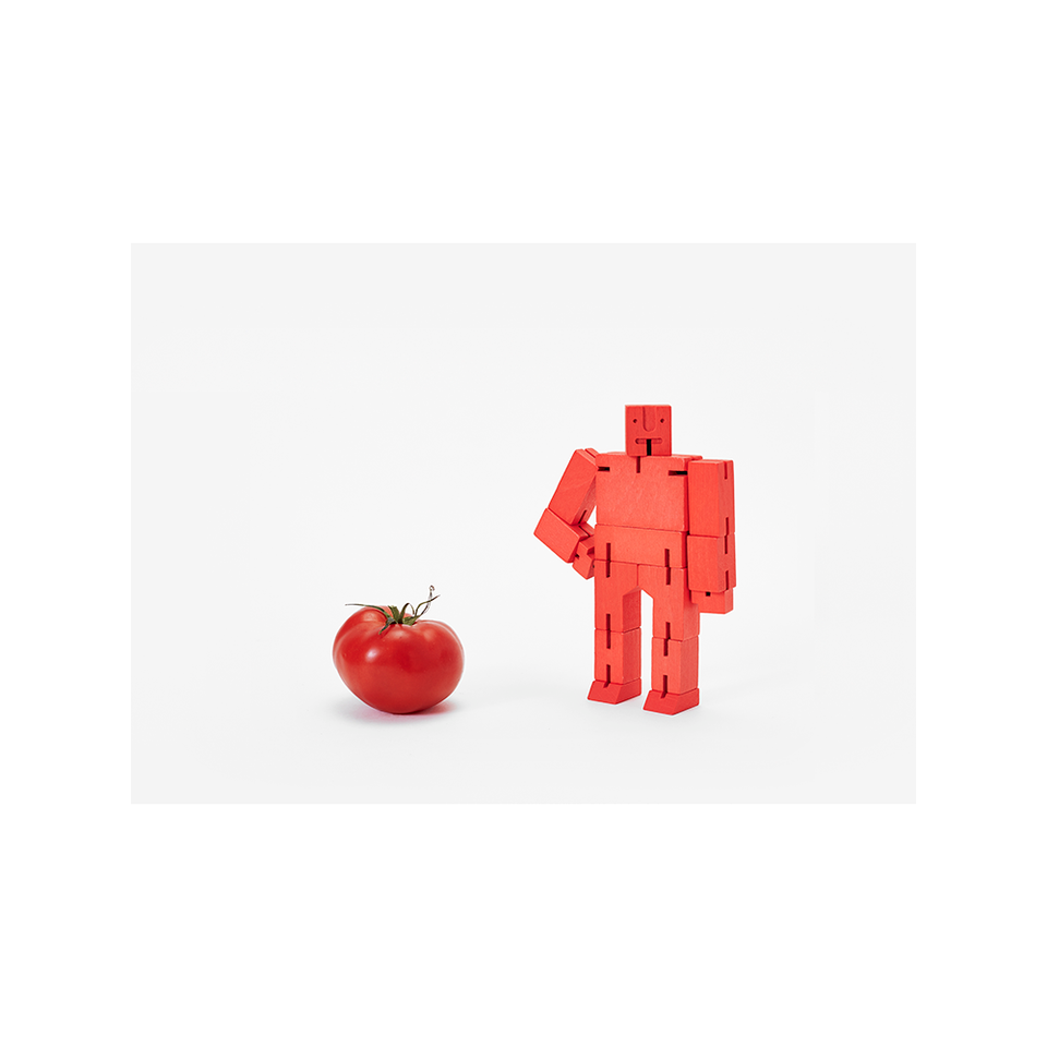 AREAWARE AW Cubebot Small - Red | the OBJECT ROOM