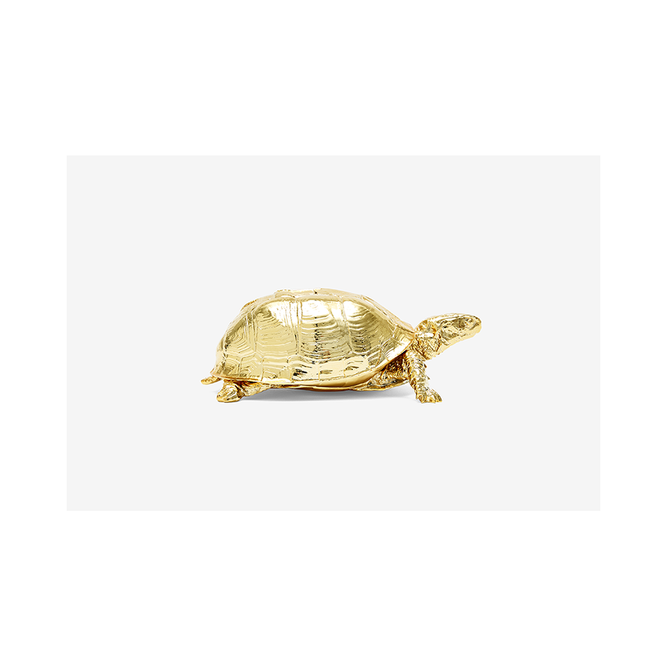 AREAWARE Turtle Box - Gold