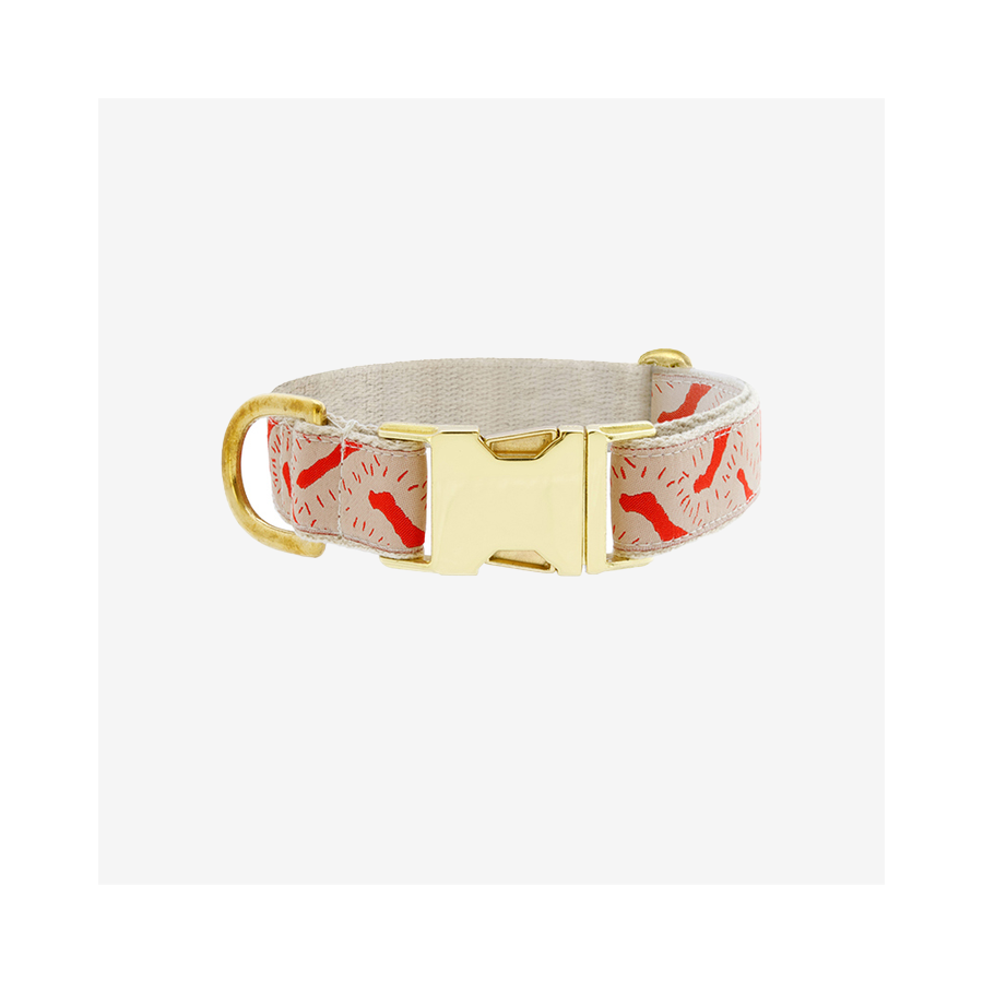 "SEE SCOUT SLEEP Collar 1"" Life Party - Cream x Vermillion 