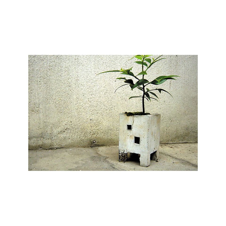 PULL PUSH PRODUCTS PU Truss Planter - Natural | the OBJECT ROOM