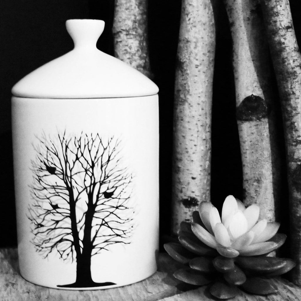 Thompson-Ferrier-Forest-Tree-Jar-Candle