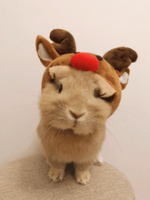 Load image into Gallery viewer, Costume for small pet, reindeer hat, costume hat for pet bunny rabbit, hat for small dog, reindeer hat for pet Pet Headwear Headwear