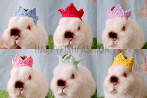 Crown for bunny rabbit , prince crown, pet crown, pet costume, king crown, halloween costume Accesories Headwear