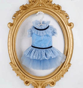 Designer Custom Made See Through Dress for Dog, Cat and Bunny Pet Clothing Pet Clothing
