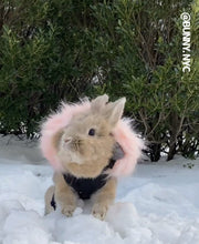 Load image into Gallery viewer, Fashion warm coat with fluffy hoodie for bunny rabbit Harness harness