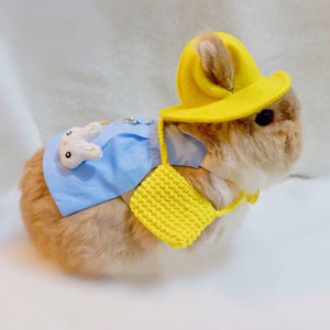 Kindergarten uniform pet harness shirt for bunny rabbit, small dogs, cat, kindergarten uniform , small pet costume shirt, harness shirt Harness Harness, Headwear