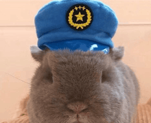 Load image into Gallery viewer, Police hat for pet bunny rabbit, small cats, dogs Pet Headwear Headwear