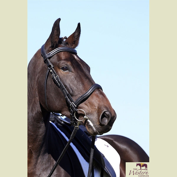 Barefoot® 'Wellington Contour' 2-in-1 Bridle