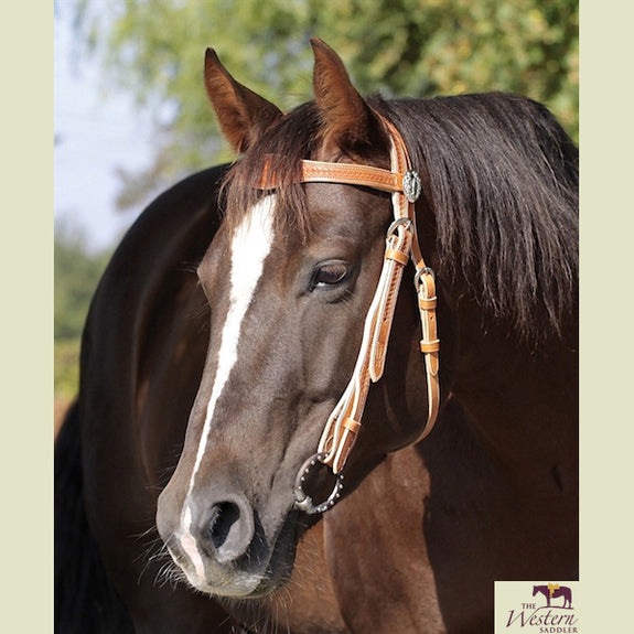 Barefoot® 'Virginia Rose' Headstall