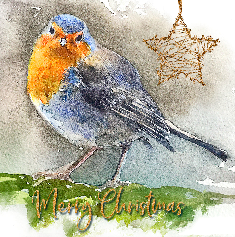 Christmas Robin - Christmas Greeting card